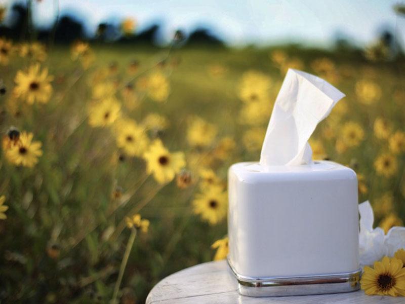 rimedi-contro-allergie